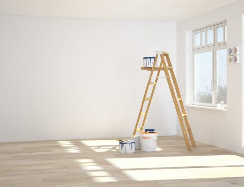 Spray, Roll, or Brush? What do the Professionals Use to Paint Your Home?