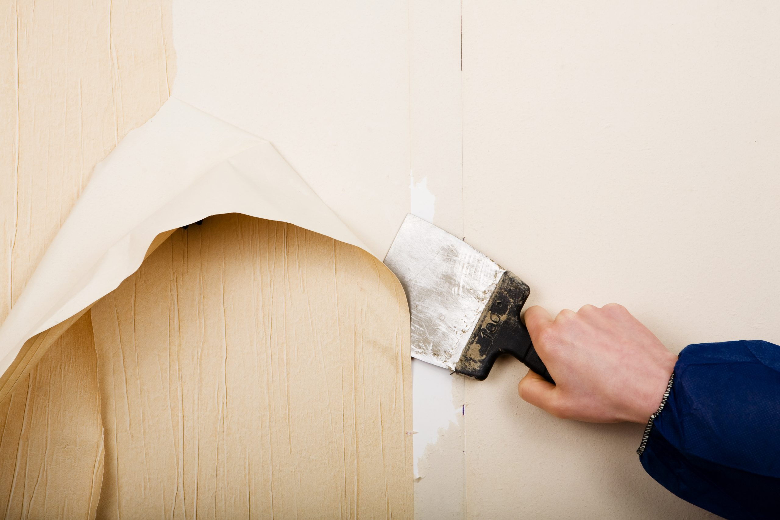 Removing Your Old Wallpaper